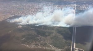 A Massive Brush Fire In Florida Is Devastating Hundreds Of Acres Of Land