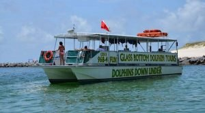 The Amazing Glass-Bottomed Boat Tour In Alabama Will Bring Out The Adventurer In You