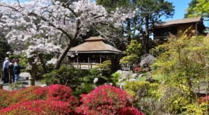 The Secret Garden In San Francisco You're Guaranteed To Love