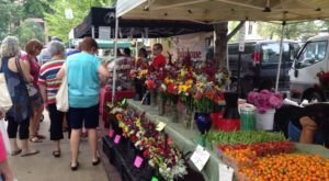 Shop For Scrumptious Produce At Dane County Farmers' Market, A Gigantic Destination In Wisconsin