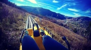 This Mountain Coaster In Colorado Will Take You On A Memorable Ride