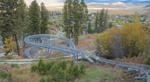 The Mountain Coaster In Wyoming That Will Take You On A Ride Of A Lifetime