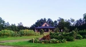 The Remote Winery In Minnesota That's Picture Perfect For A Day Trip