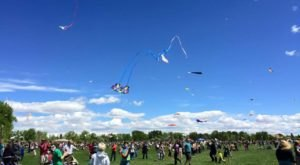 This Incredible Kite Festival In Colorado Is A Must-See