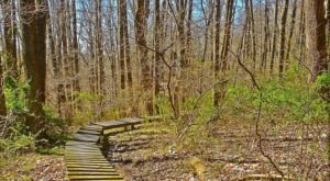 10 Easy Hikes To Add To Your Outdoor Bucket List In Ohio