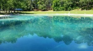 The Incredible Spring-Fed Pool In Georgia You Absolutely Need To Visit