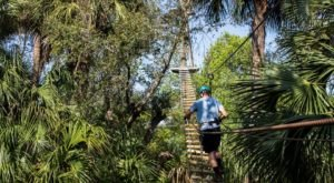 The Epic Canopy Course In Florida That Will Bring Out The Adventurer In You