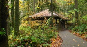 The Under-Appreciated State Park In Portland You're Sure To Love