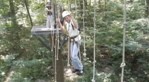 The Epic Canopy Course In Pennsylvania That Will Bring Out The Adventurer In You