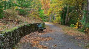 Visit These 8 Urban Parks In Rhode Island For A Quick Escape Into Nature