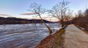 The 9 Most Beautiful Bike Trails You Can Take In Washington DC