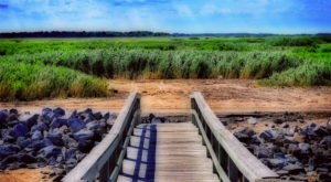 Escape To These 14 Hidden Oases In Delaware To Find Peace And Quiet