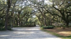 The 13 Best Backroads In Florida For A Long Scenic Drive