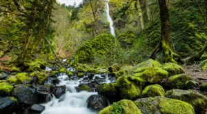 There's A Gorgeous Waterfall Hiding In A Forest In Oregon And You'll Want To Visit