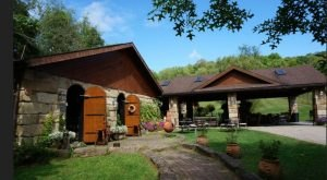 The Remote Winery In West Virginia That's Picture Perfect For A Day Trip