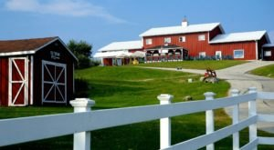 The Remote Winery In Massachusetts That's Picture Perfect For A Day Trip