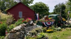 These 12 Charming Farms In Connecticut Will Make You Love The Country