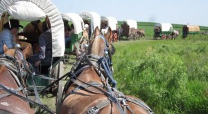 You'll Never Forget This Covered Wagon Train Trip Through North Dakota