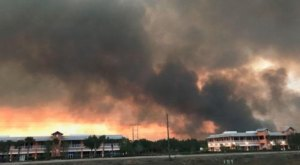 Wildfires Are Ripping Through Parts Of Florida And It's Truly Heartbreaking