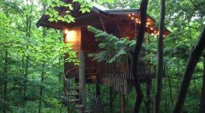 Sleep Underneath The Forest Canopy At This Epic Treehouse In New York