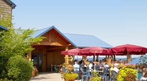 The Remote Winery In New York That's Picture Perfect For A Day Trip