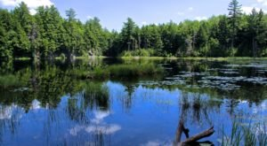 This Might Just Be The Most Beautiful Campground In All Of Vermont