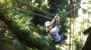 The Epic Zipline Near San Francisco That Will Take You On An Adventure Of A Lifetime