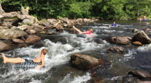 The Incredible Spring-Fed Pool In Tennessee You Absolutely Need To Visit
