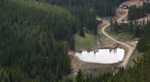 Most People Don't Know There's A Fountain Of Youth Hiding Deep In Colorado's Woods