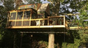 Sleep Underneath The Forest Canopy At This Epic Treehouse In Massachusetts