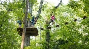 There's An Adventure Park In Delaware That Everyone In Your Family Will Love