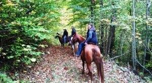 The Horseback Riding Trail In North Carolina That's Pure Magic