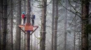 The Epic Zipline Near Portland That Will Take You On An Adventure Of A Lifetime