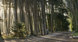 The Hiking Trail Hiding In San Francisco That Will Transport You To Another World