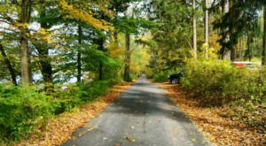 The 7 Best Backroads In New Jersey For A Long Scenic Drive
