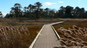 8 Trails In Delaware With An Undeniably Amazing Final Destination