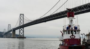 The 8 Weirdest And Strangest Things That Have Ever Happened In San Francisco