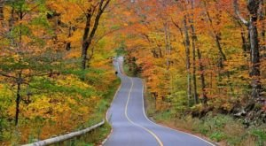 Take These 7 Country Roads In Massachusetts For A Gorgeous Scenic Drive