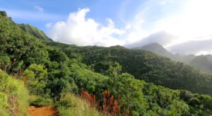 The 9 Gorgeous Hikes Everyone In Hawaii Must Complete