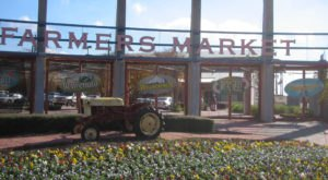 Everyone In Texas Must Visit The Dallas Farmers Market At Least Once