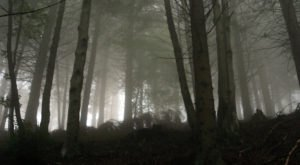 The Haunted Hike In Massachusetts That Will Send You Running For The Hills
