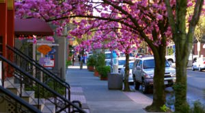 You'll Absolutely Love These 10 Charming, Walkable Streets In Portland
