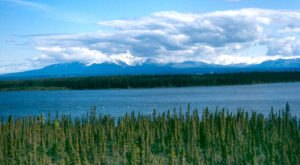 9 Things No Self-Respecting Alaskan Would Ever Do