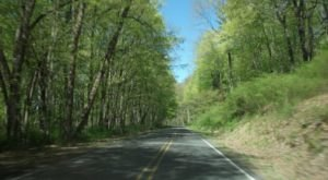 A Drive Down New Jersey's Loneliest Road Will Take You Miles And Miles Away From It All
