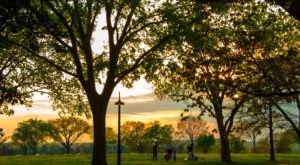 15 Undeniable Reasons Why Everyone Loves Washington DC