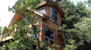 Sleep Underneath The Forest Canopy At This Epic Treehouse In Utah