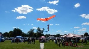 This Incredible Kite Festival In Illinois Is A Must-See