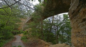 10 Of The Best Hiking Trails In Kentucky Under 3 Miles