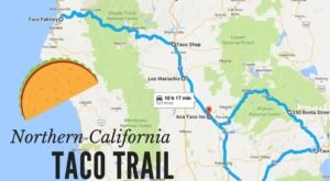 Your Tastebuds Will Go Crazy For This Amazing Taco Trail In Northern California