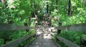 This Just Might Be The Most Underrated Hike In All Of Illinois